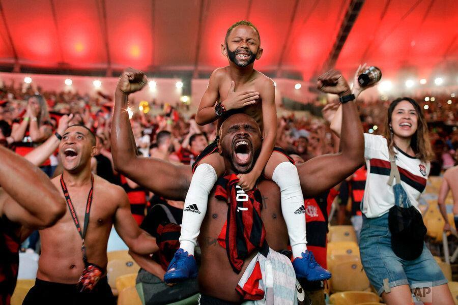 عکس سال، شادی فلامینگویی ها در ماکارنا